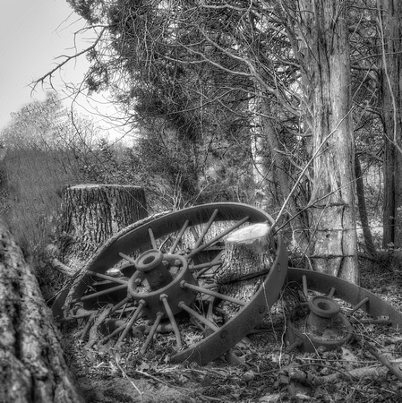 Rusted Wheel, B&W